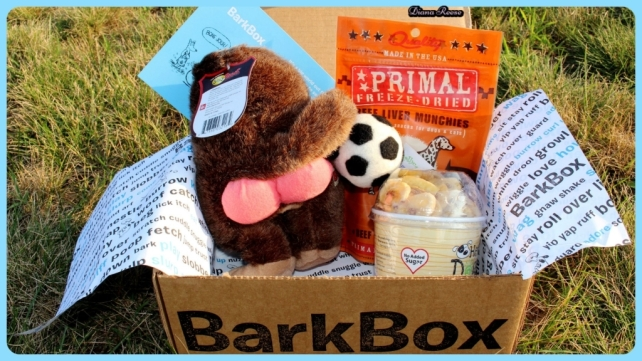 barkbox6