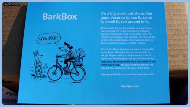 barkbox8